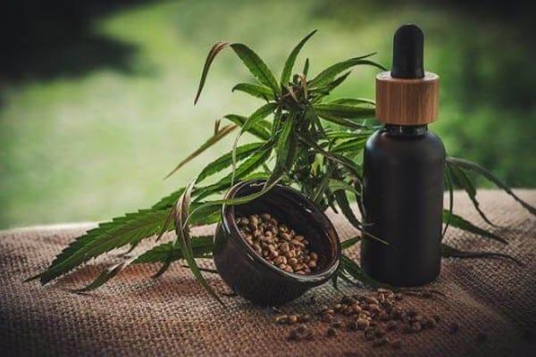 aurora cannabis aktien